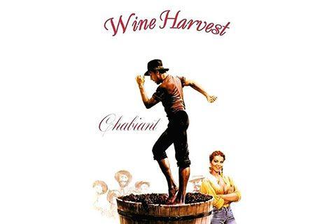Chabiant Wine Harvest Festival